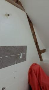 salle de bain reine des reinettes